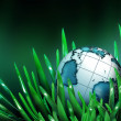 World in the grass — Stock Photo