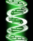 DNA — Stock Photo