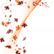 Fall background — Stock Photo #3623364