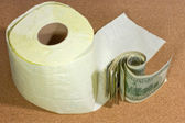 Money or toilet paper? — Stock Photo