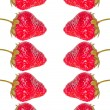 Group of strawberries — Stock fotografie
