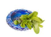 Ceramic ashtray with green mint — Stock Photo
