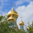 Stock Photo: Russian orthodox church cupolas