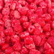 Many fresh red raspberry — Stock Photo