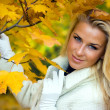 Stock Photo: Blonde girl in fall maple leaves