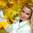 Blonde girl in fall maple leaves - Stock Photo