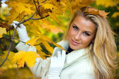 Blonde girl in fall maple leaves — Stock Photo