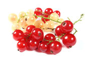 Fresh red and white currants — Stock Photo