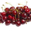 Fresh cherries on white background — Stock Photo