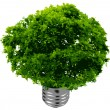 Royalty-Free Stock Imagen vectorial: Eco energy - vector format