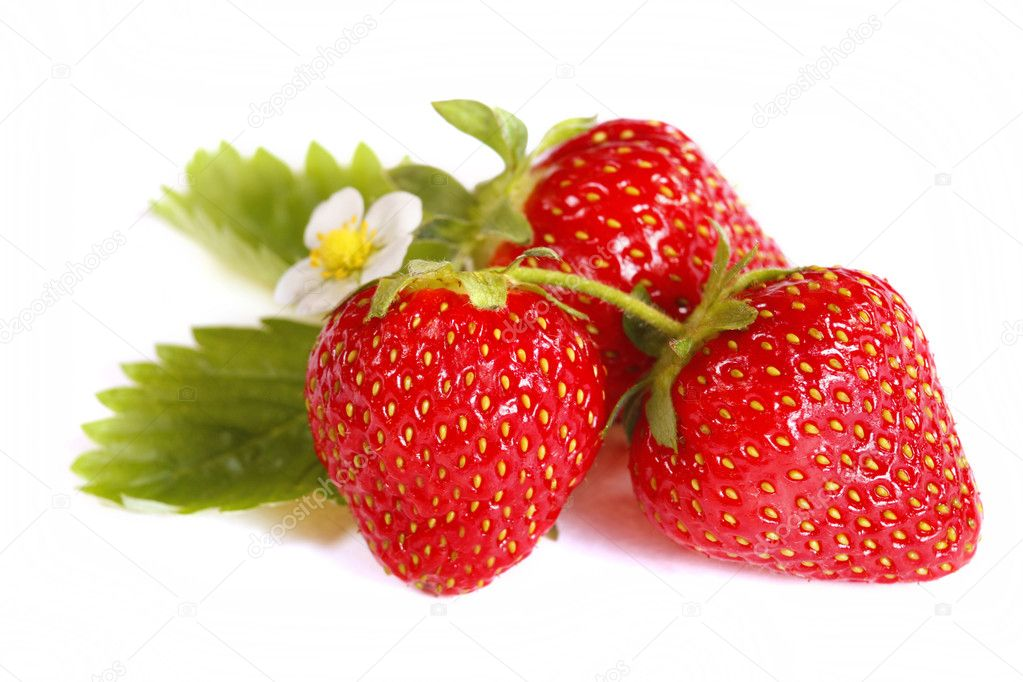 Isolated fruits - Strawberries on white background — Stock Photo #3127988