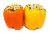 Two stuffed peppers — Stock Photo