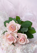 Pink roses on wedding lace — Stock Photo