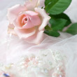 Pink rose on wedding lace (copy space) — Stock Photo #2774147