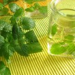 Stock Photo: Aromatic vinegar with lemon balm