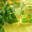 Aromatic vinegar with lemon balm - Stock Photo