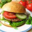 Home-made Burger — Lizenzfreies Foto