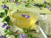 Violet tea — Stock Photo