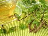 Birch leaves tea — Stock Photo