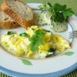 Scrambled eggs with watercress — Stock Photo #3069334
