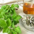 Stock Photo: Raspberry-leaves tea