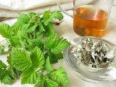Raspberry-leaves tea — Stock Photo