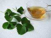 Strawberry-leaves tea — Stock Photo