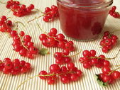 Homemade red currant jam – Johannisbeerkonfitüre — Stock Photo