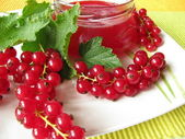 Homemade red currant jelly — Stock Photo