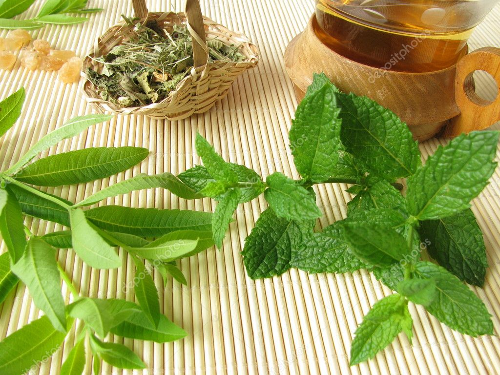 Herbal tea with lemon verbena and moroccan mint — Stock Photo ...