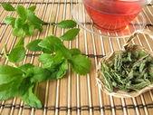 Tea sweetened with Stevia — Stock Photo