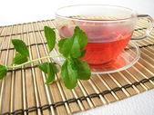 Tea sweetened with fresh Stevia — Stock Photo