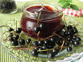 Homemade black currant jelly — Stock Photo