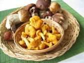 Edible mushrooms in a small basket — Zdjęcie stockowe