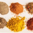 Variety of crushed spices. — Stock Photo #2713726