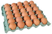 Eggs. Isolated — Stock Photo
