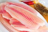Fish. — Stock Photo