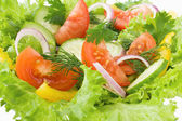 Salad from tomato, cucumber and lettuce — Stock Photo