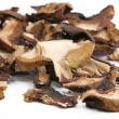 Dried wild mushrooms — Stock Photo