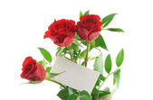 Roses with blank love note — Stock Photo