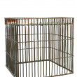 Stock Photo: Isolated cage