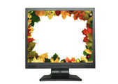 Lcd with leaf frame — Stock Photo