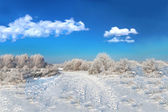 Wild winter scenery and cumulus clouds — Stock Photo