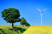 Wind turbines and trees — Stock Photo