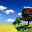 Landscape with field and wind turbine — Stock Photo
