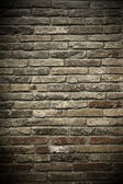 Wall of bricks — Stock Photo
