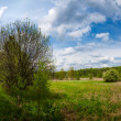Countryside panorama — Stock Photo