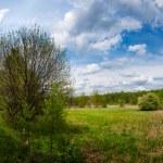 Countryside panorama — Stock Photo