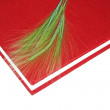 Stock Photo: The Red Book and plant feather
