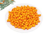 Plate with berries of sea buckthorn — Stock Photo